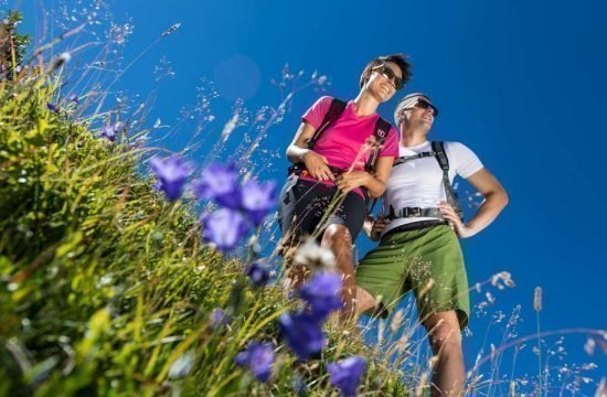 sommerurlaub-antholzertal (4)